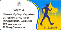 National Cup Race Walking. National Competitions Race Walking in honour V.Holubnycheho